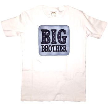 Applique Tee - Big Brother on Blue Gingham